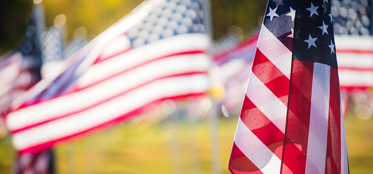 American flags waving in the wind during a Veterans Day celebration.