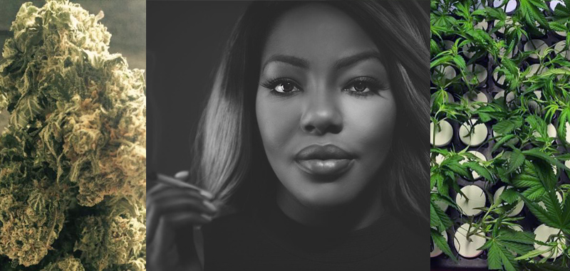 Charlo Greene: Cultivating Diversity in the Cannabis Industry