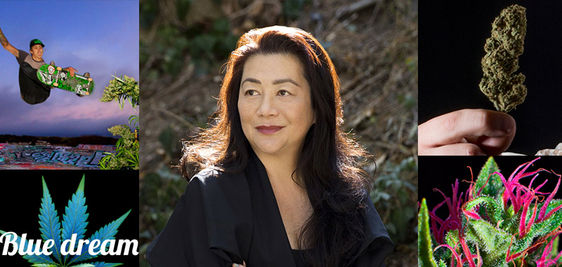 Ophelia Chong: Changing Public Perceptions of Cannabis with Stock Photography