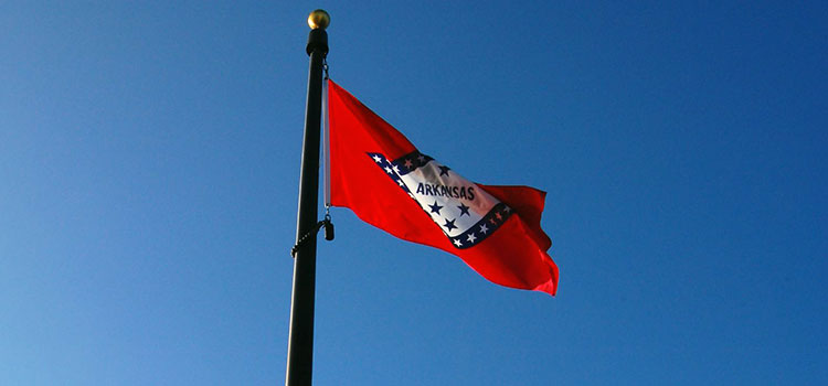 Arkansas' state flag flying before a cloudless sky.