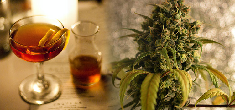 Alcohol and cannabis are the two most popular psychoactive substances on the planet.