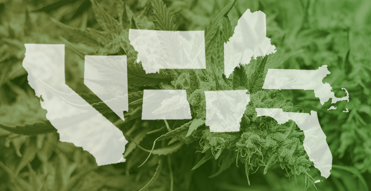 Nine states voted in favor of their cannabis measures last night: California, Nevada, Montana, North Dakota, Arkansas, Maine, Massachusetts, and Florida.