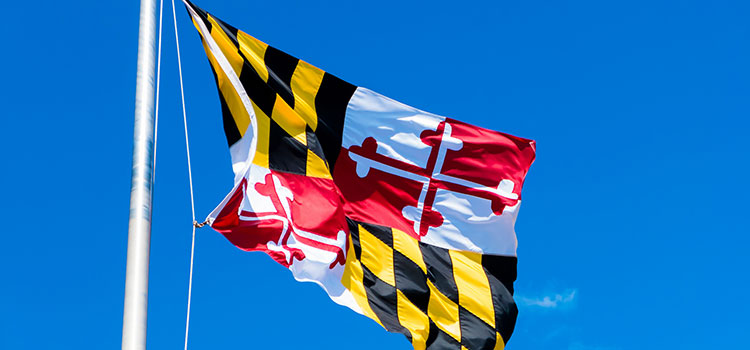 The state flag of Maryland flying on a clear, blue-skied day.