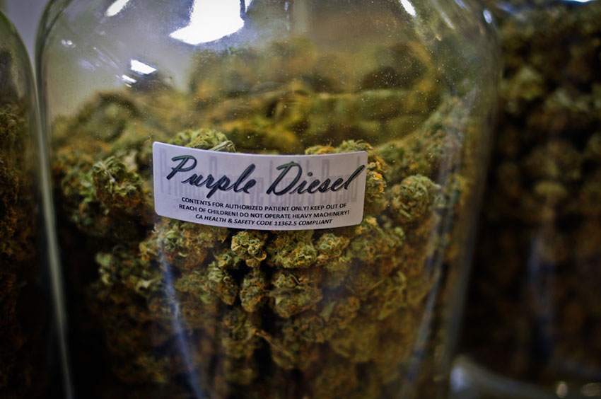 A jar of Purple Diesel on display in a California medical cannabis dispensary.