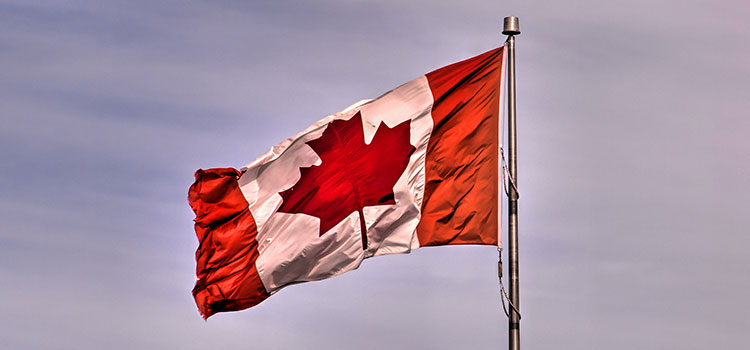 The flag of Canada, a.k.a. the Maple Leaf.