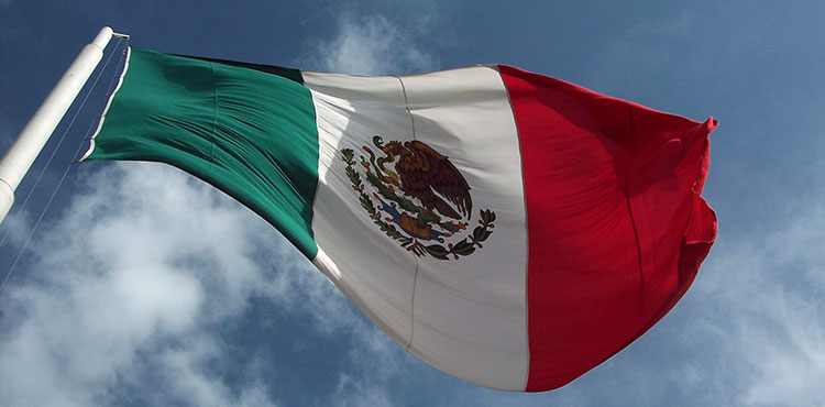 The flag of Mexico flying in the wind.