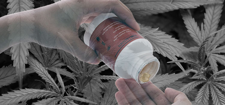 As legalization and reform efforts advance, so does cannabis delivery technologies.