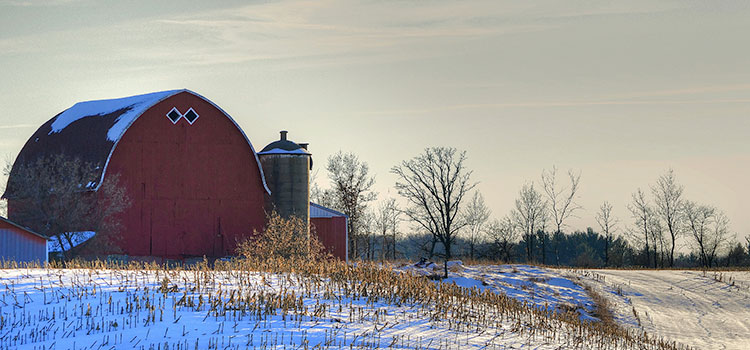 A farm's barn located in Arnott, Wisconsin.