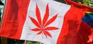 A cannabis-themed depiction of the national flag of Canada, pictured during the 2014 World Marijuana March in Vancouver, British Columbia.