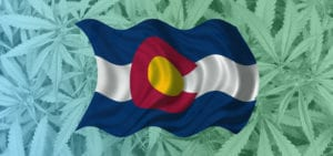A graphic of the Colorado flag overlaid onto a picture of a commercial cannabis canopy.