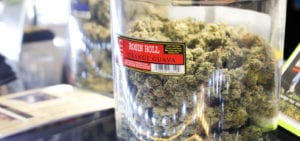 A large jar of cannabis nugs sitting on a counter inside of a licensed medical marijuana dispensary.