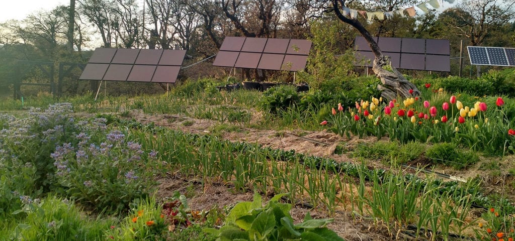 View of the solar panels and organic garden at Happy Day Farm in Mendocino Conuty, California.