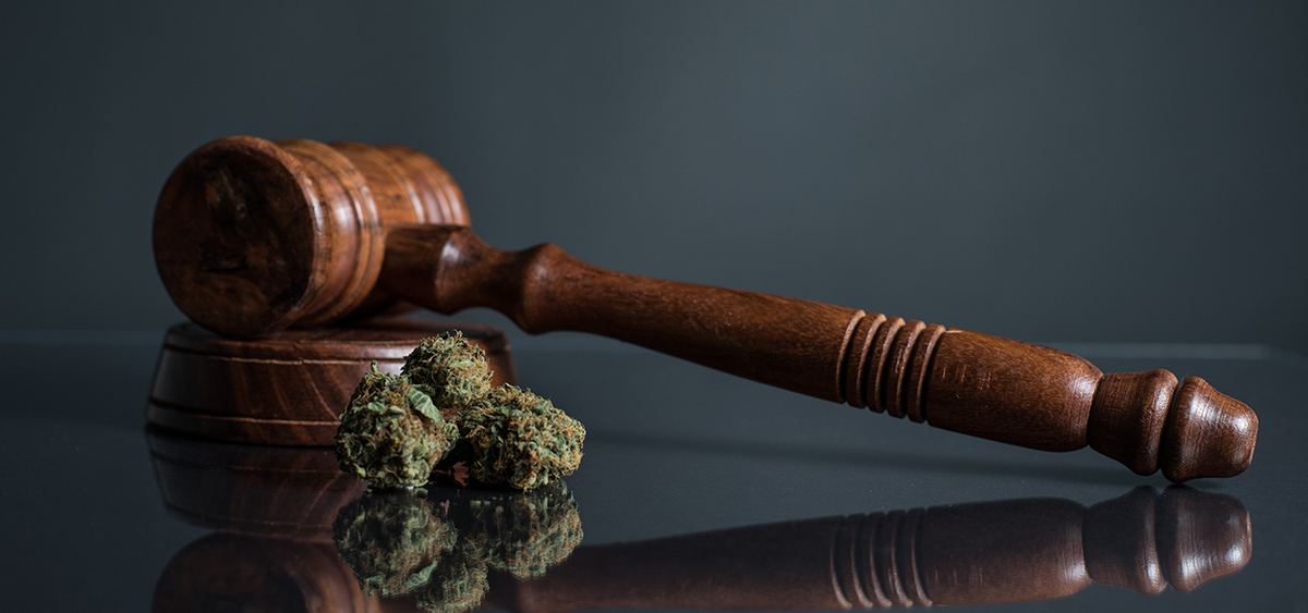 Sonoma County, California Expunging 2,700 Cannabis Convictions