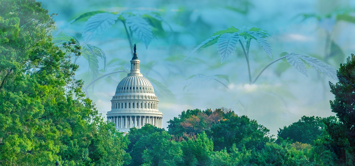 US House to Vote on Cannabis Legalization Next Month