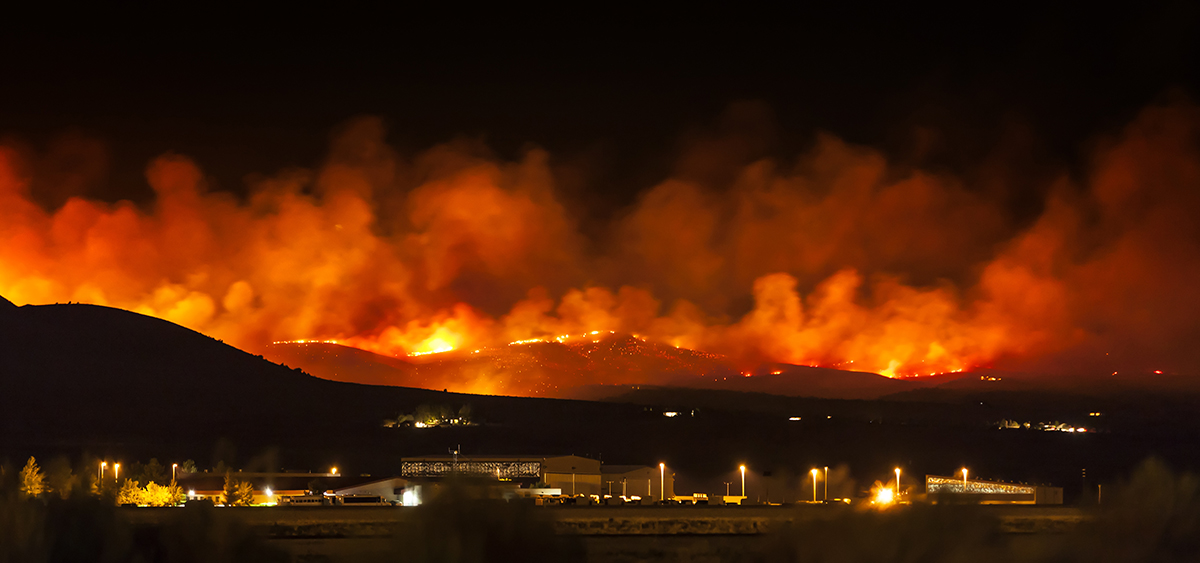 photo of Wildfires Have Devastated the West Coast Cannabis Industry image