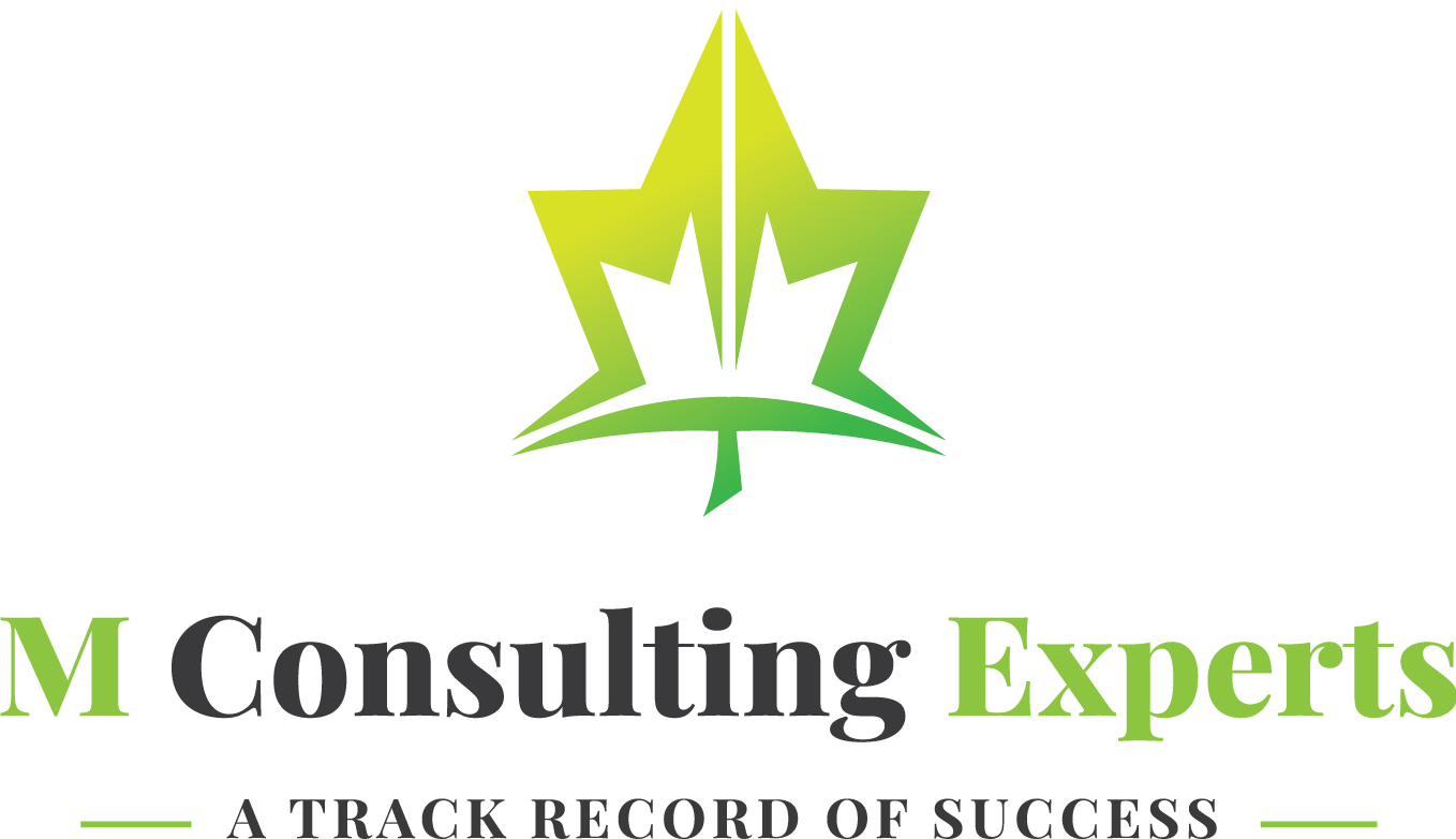 M Consulting Experts
