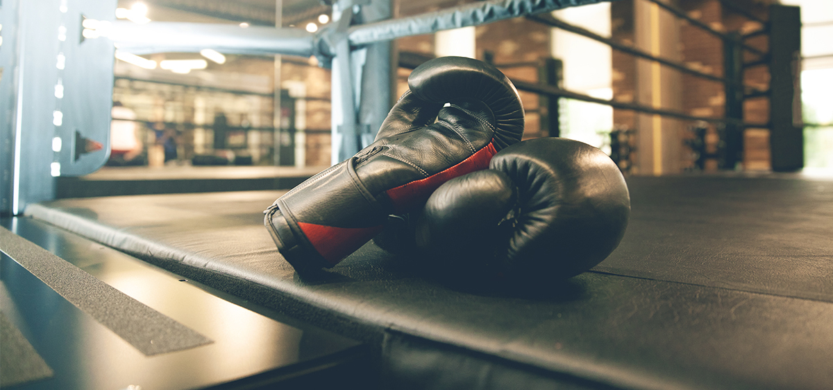 Florida Ends Cannabis Testing for Boxers/MMA Fighters
